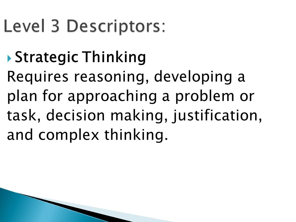 Level 3 Descriptors: Strategic Thinking