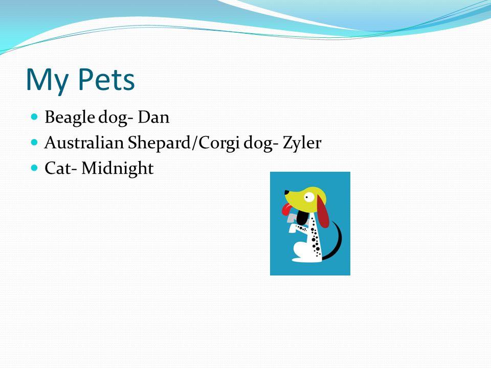 My Pets Beagle dog- Dan Australian Shepard/Corgi dog- Zyler