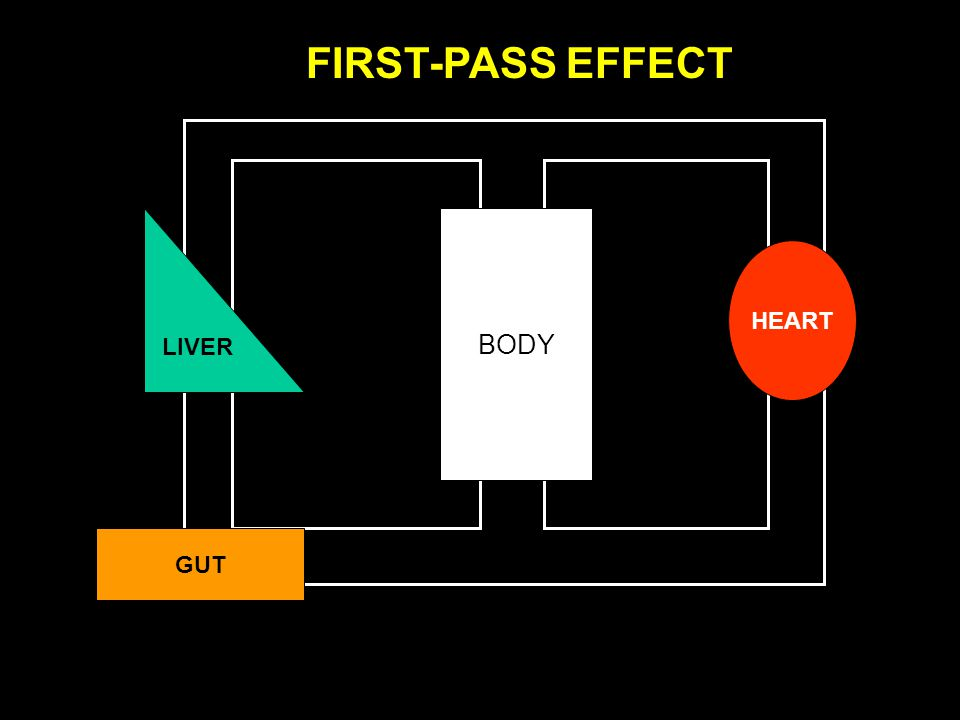 FIRST-PASS EFFECT LIVER BODY HEART GUT