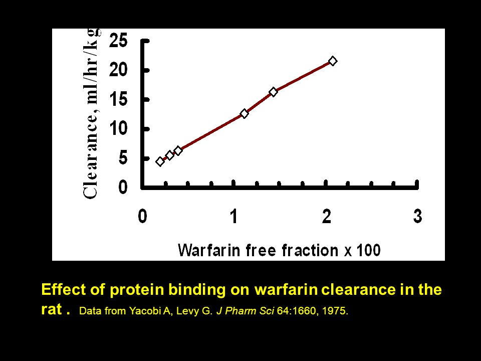 Effect of protein binding on warfarin clearance in the rat