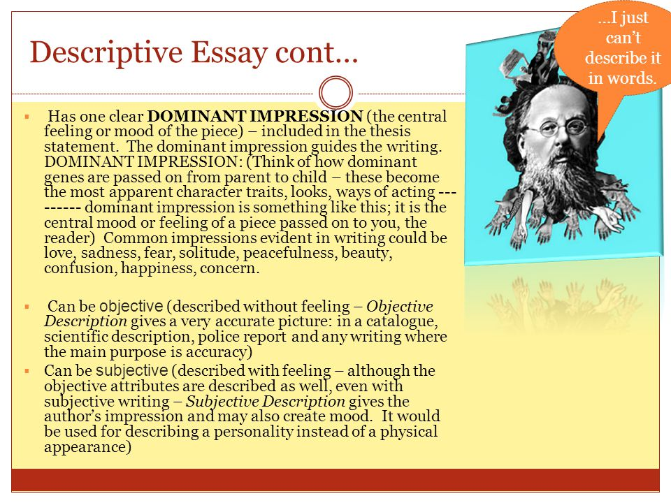Descriptive Essay cont…