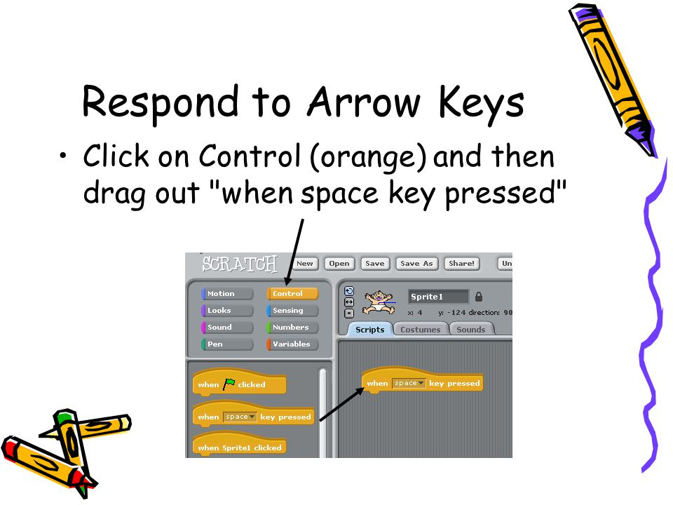 Respond to Arrow Keys Click on Control (orange) and then drag out when space key pressed