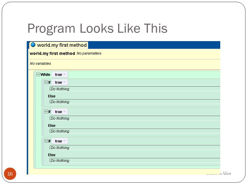 Program Looks Like This