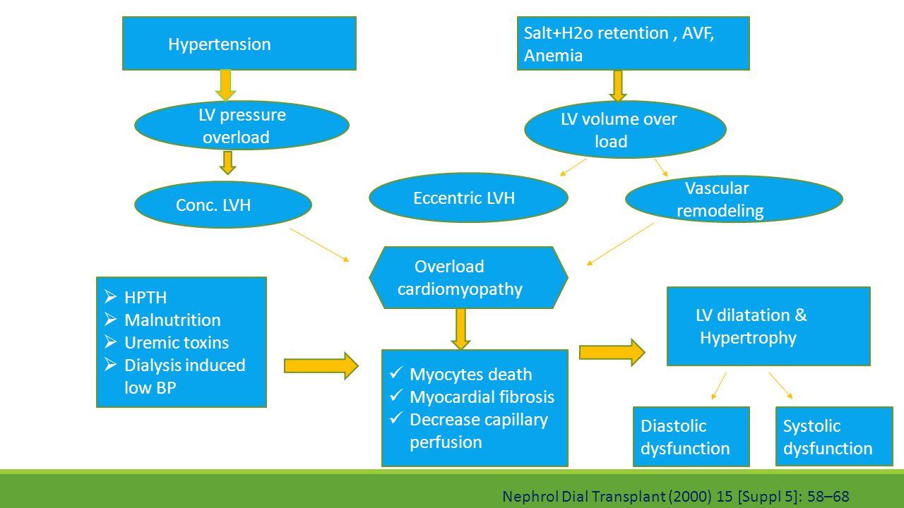 Salt+H2o retention , AVF, Anemia