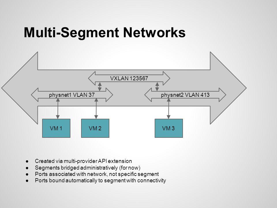 Multi-Segment Networks