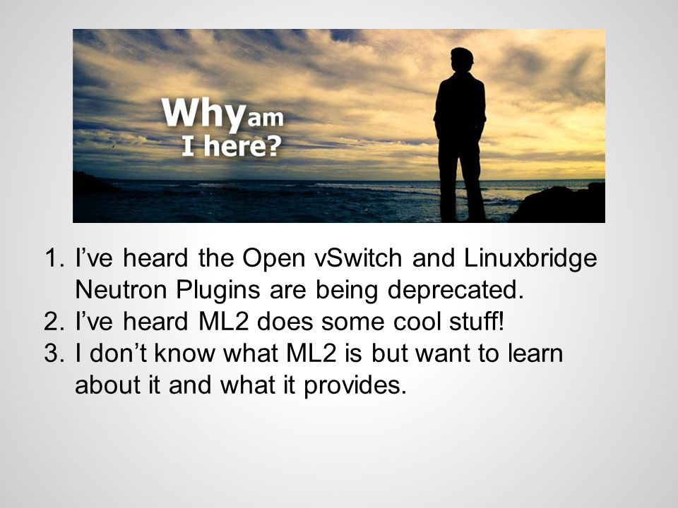 I've heard the Open vSwitch and Linuxbridge Neutron Plugins are being deprecated.