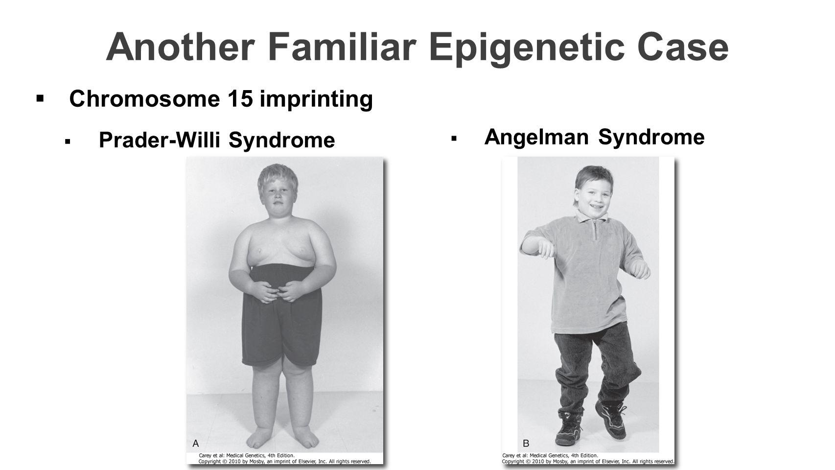 Another Familiar Epigenetic Case