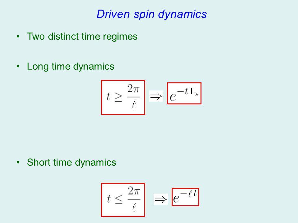 Driven spin dynamics Two distinct time regimes Long time dynamics