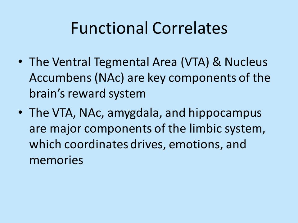 Functional Correlates