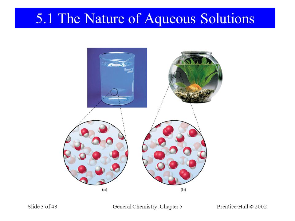 5.1 The Nature of Aqueous Solutions