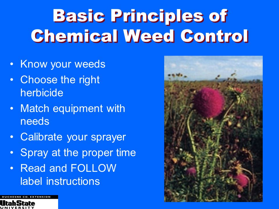 Basic Principles of Chemical Weed Control