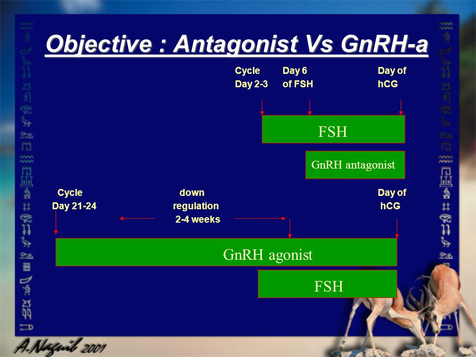 Objective : Antagonist Vs GnRH-a