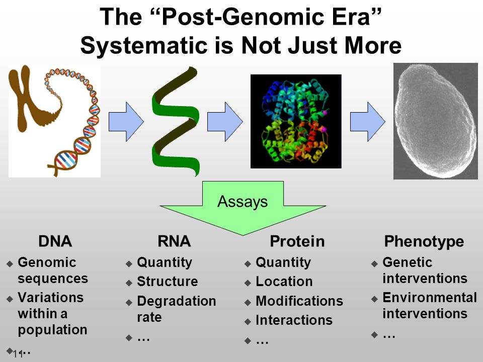 The Post-Genomic Era Systematic is Not Just More