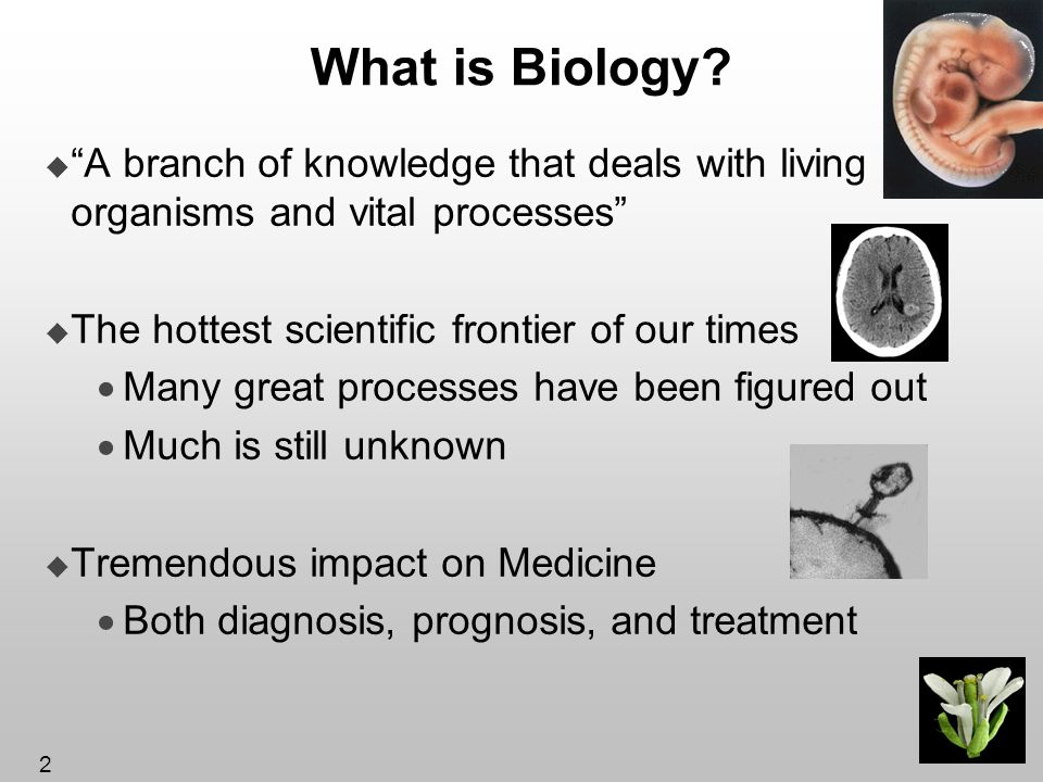 What is Biology A branch of knowledge that deals with living organisms and vital processes The hottest scientific frontier of our times.