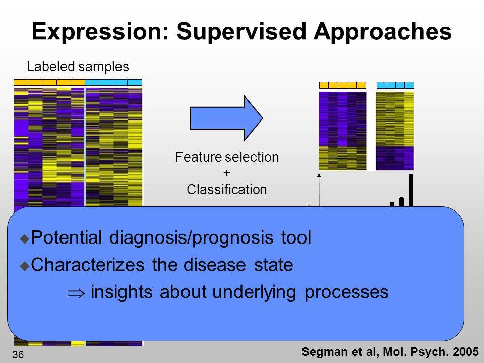 Expression: Supervised Approaches