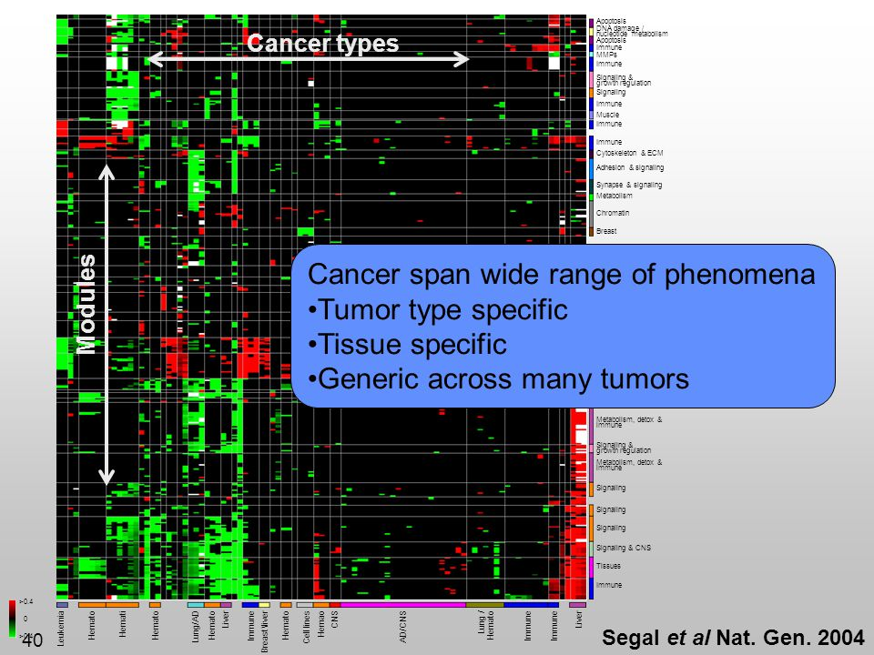 Cancer span wide range of phenomena Tumor type specific