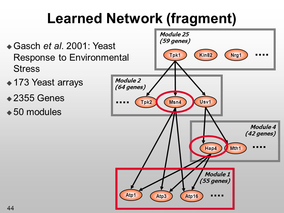 Learned Network (fragment)