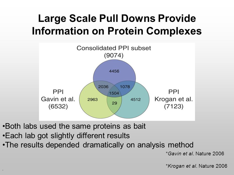 Large Scale Pull Downs Provide Information on Protein Complexes