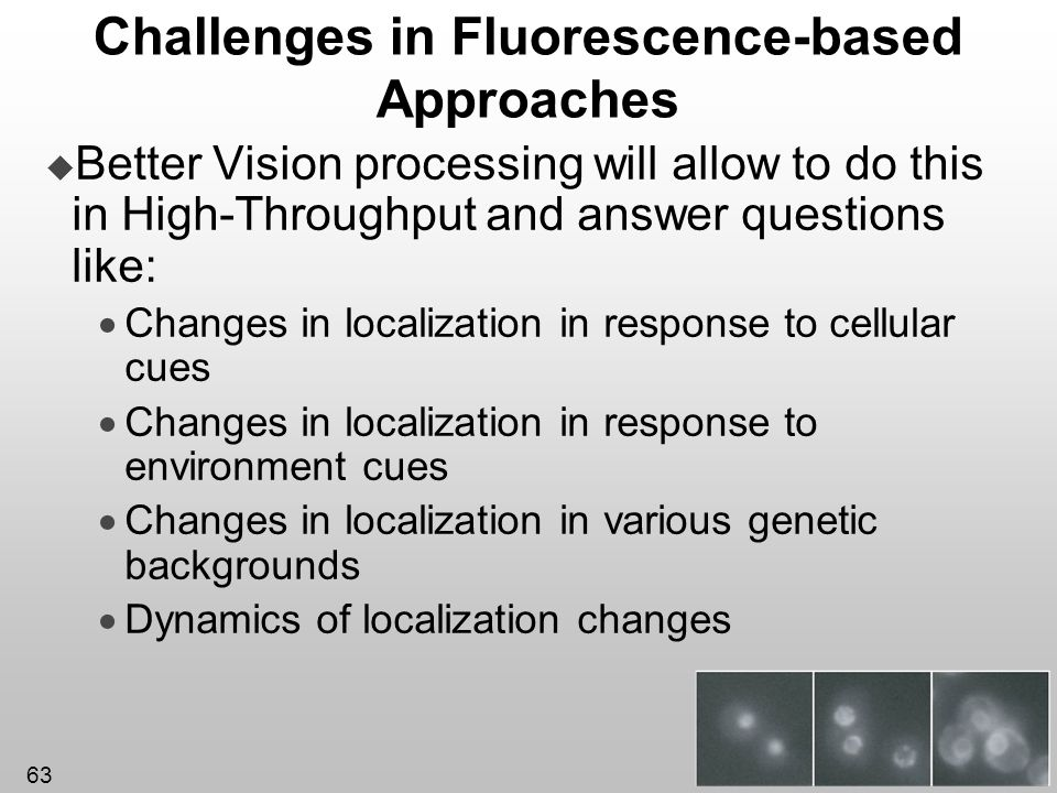 Challenges in Fluorescence-based Approaches