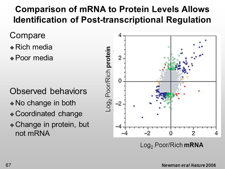 Comparison of mRNA to Protein Levels Allows Identification of Post-transcriptional Regulation