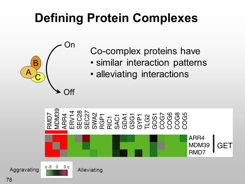 Defining Protein Complexes