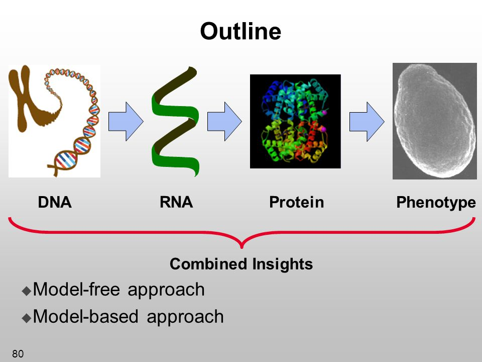 Outline Model-free approach Model-based approach Protein DNA RNA