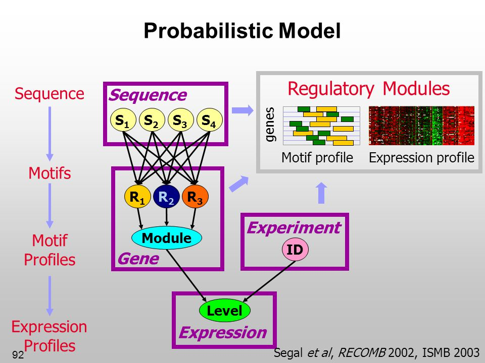 Probabilistic Model Regulatory Modules Sequence Sequence Motifs
