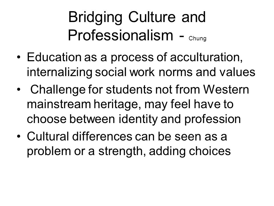 Bridging Culture and Professionalism - Chung