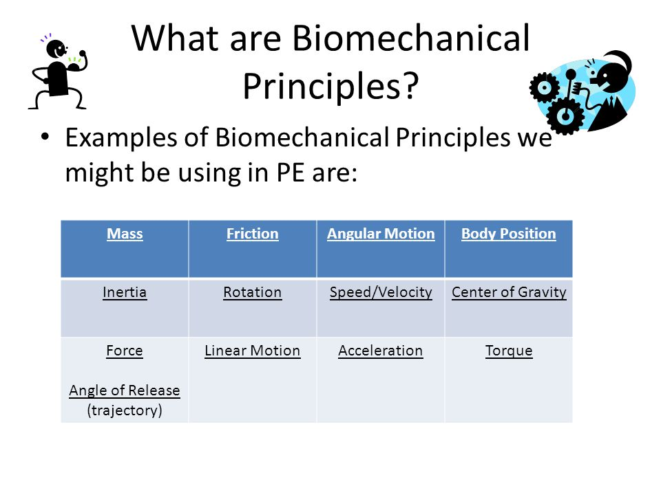 What are Biomechanical Principles