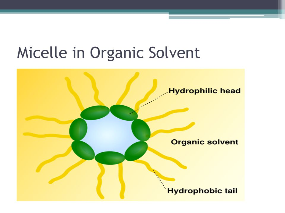Micelle in Organic Solvent