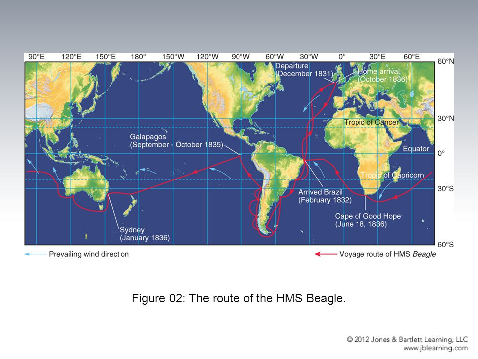 Figure 02: The route of the HMS Beagle.