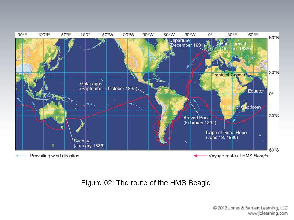 Figure 02: The route of the HMS Beagle.