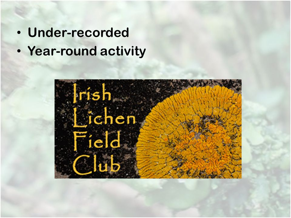 Under-recorded Year-round activity