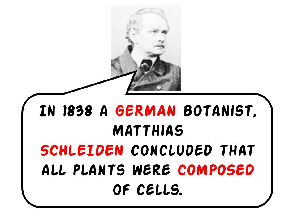 In 1838 a GERMAN botanist, Matthias