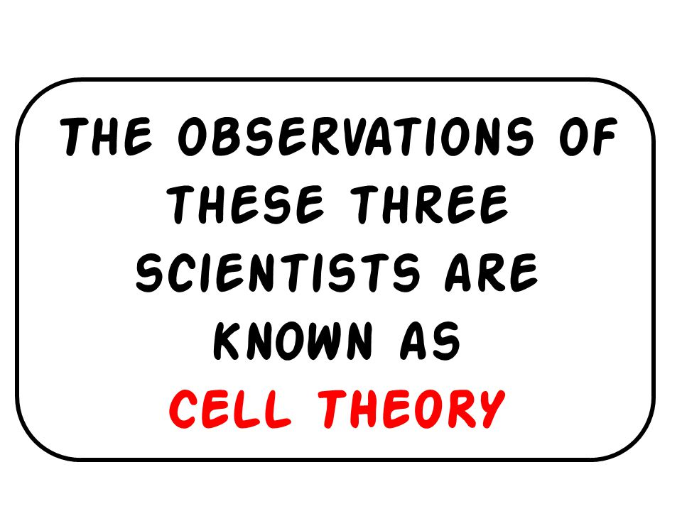 The observations of these three scientists are known as