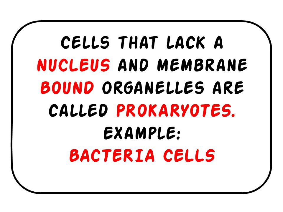 Cells that lack a NUCLEUS and membrane BOUND organelles are called PROKARYOTES.