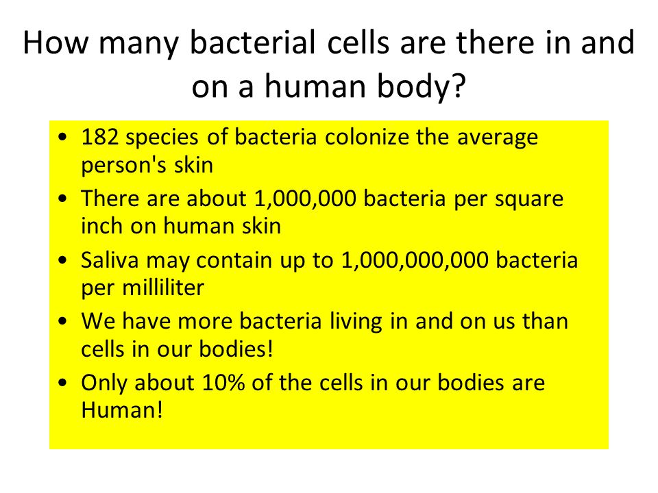 How many bacterial cells are there in and on a human body