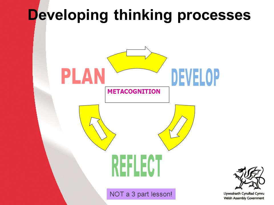 Developing thinking processes