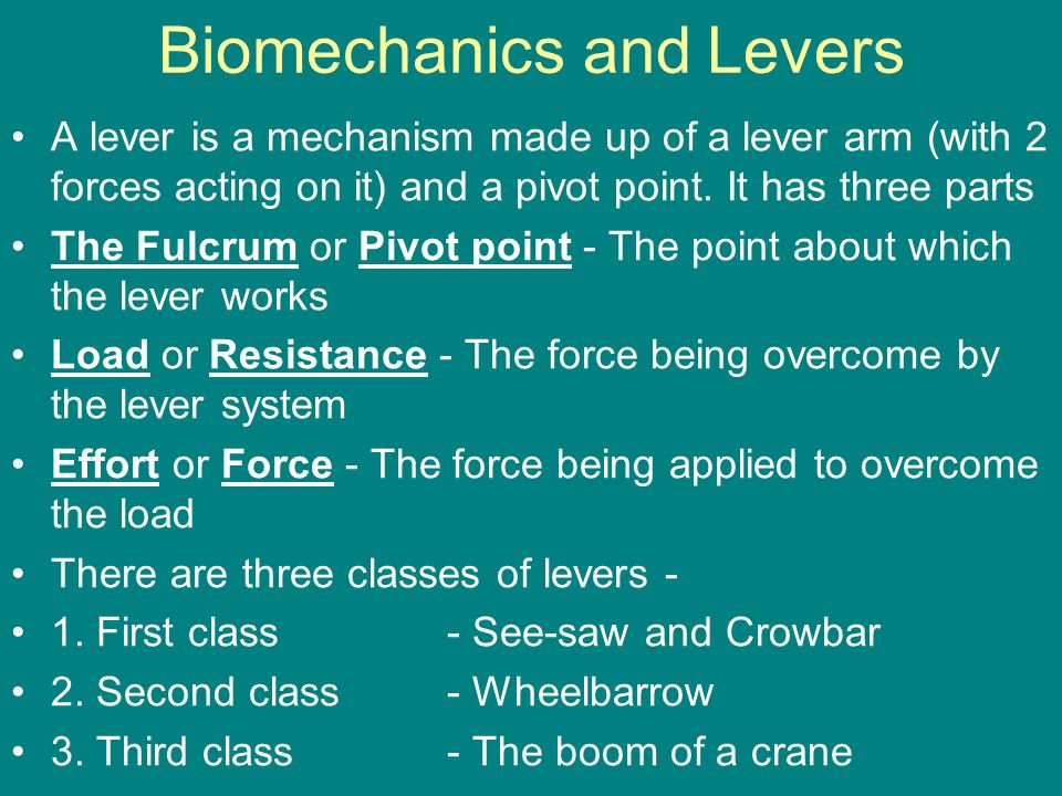 Biomechanics and Levers