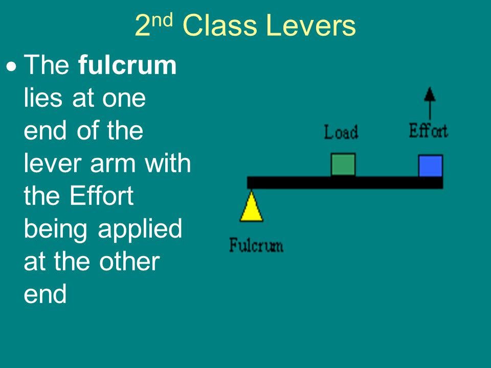 2nd Class Levers The fulcrum lies at one end of the lever arm with the Effort being applied at the other end.