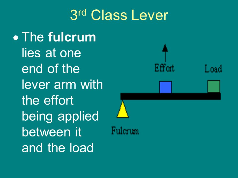 3rd Class Lever The fulcrum lies at one end of the lever arm with the effort being applied between it and the load.