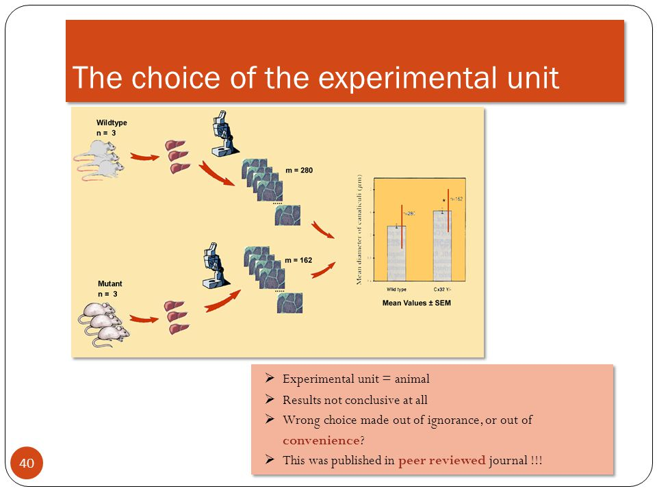 The choice of the experimental unit
