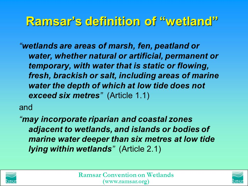 Ramsar's definition of wetland