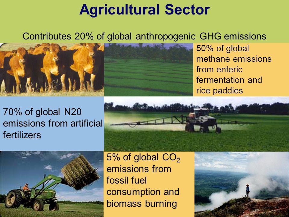 Contributes 20% of global anthropogenic GHG emissions