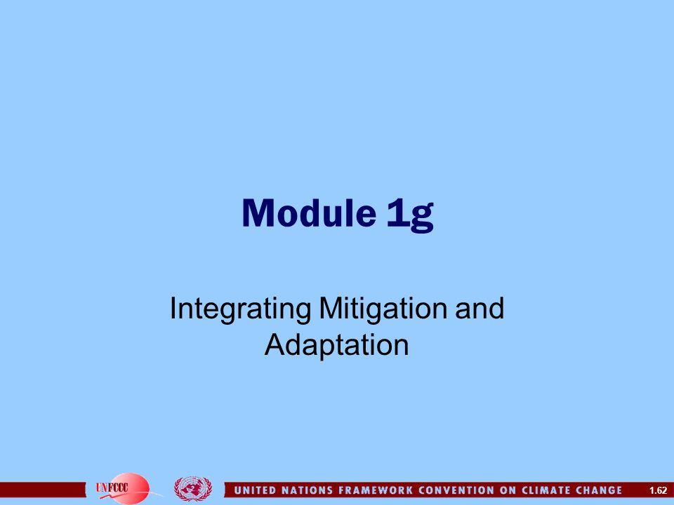 Integrating Mitigation and Adaptation