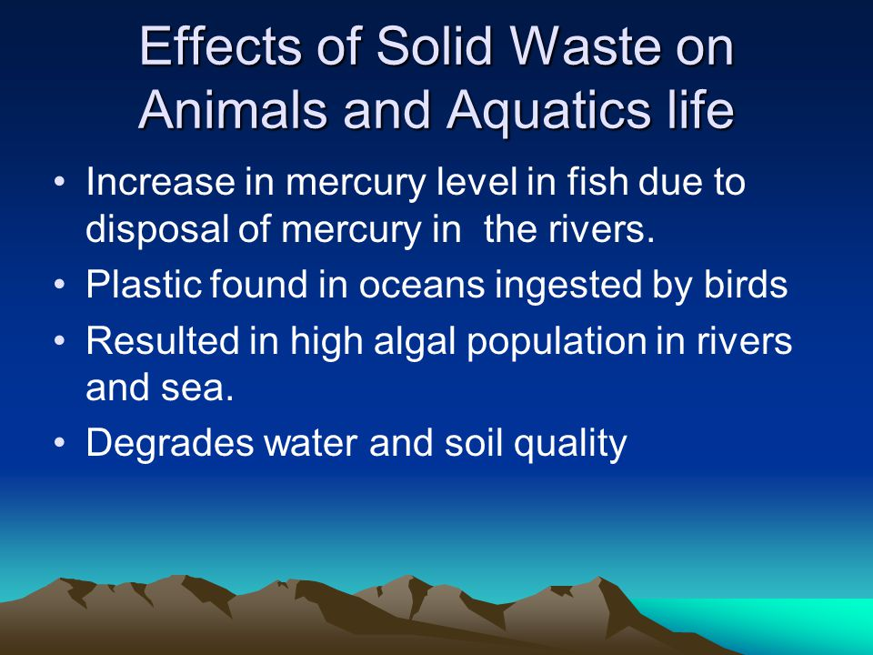 Effects of Solid Waste on Animals and Aquatics life