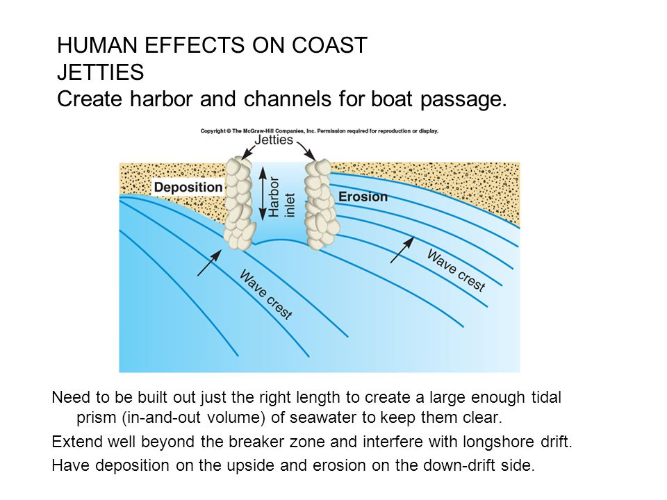 HUMAN EFFECTS ON COAST JETTIES Create harbor and channels for boat passage.