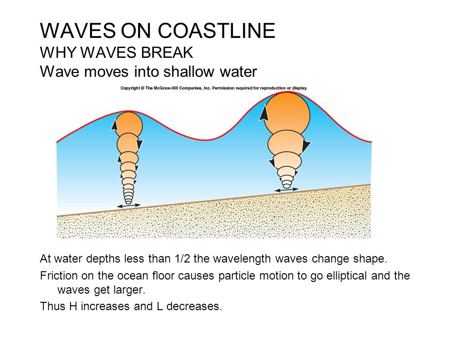 WAVES ON COASTLINE WHY WAVES BREAK Wave moves into shallow water