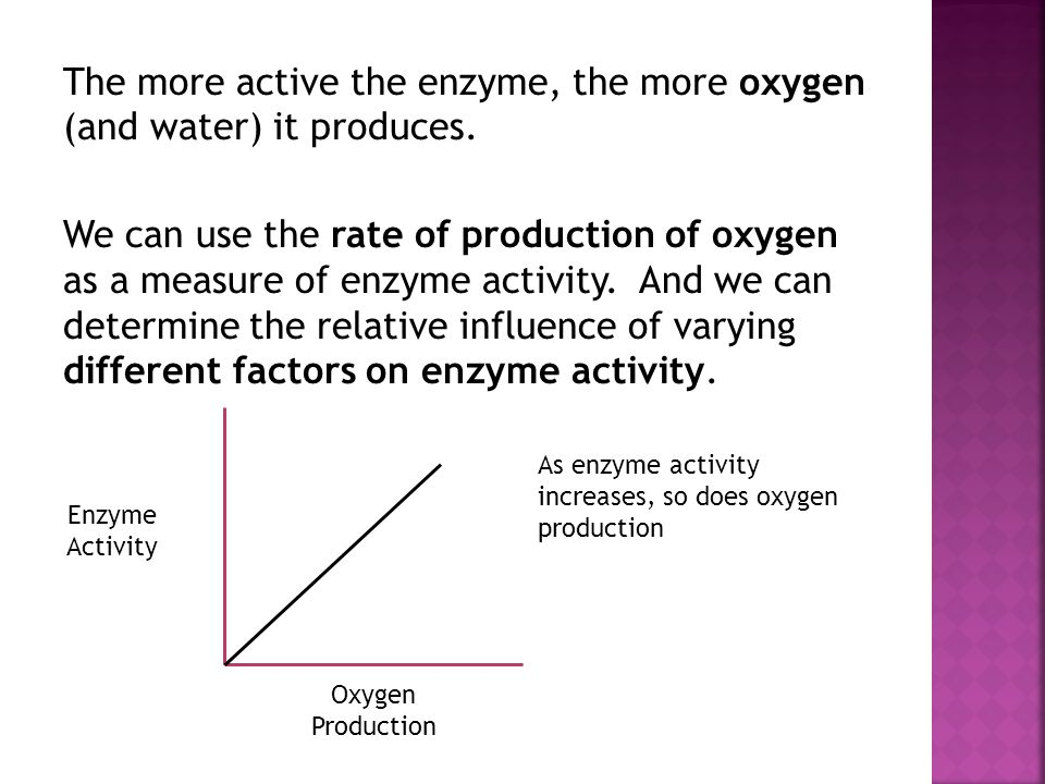 The more active the enzyme, the more oxygen (and water) it produces