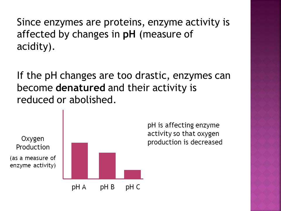 (as a measure of enzyme activity)